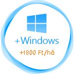 windows-1800